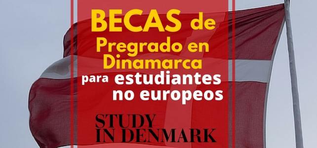 Becas en Dinamarca – Ideal para latinoamericanos