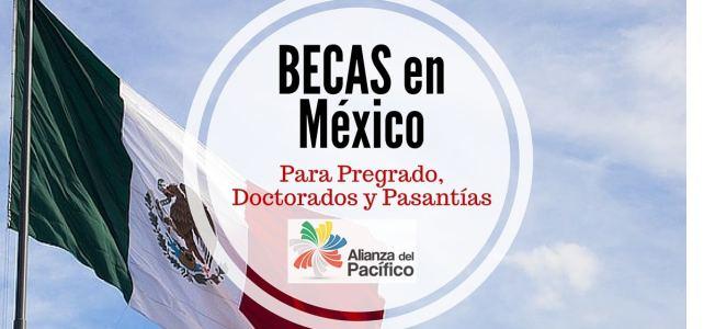 Becas en México para pregrado, doctorado y pasantías