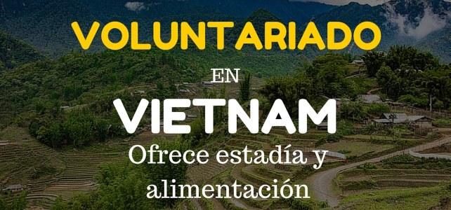 Voluntariado en Vietnam junto con otros extranjeros – Ideal para mejorar tu Inglés