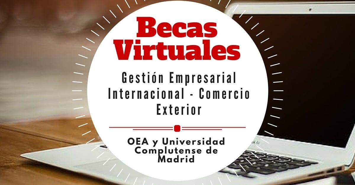 Becas de la OEA para maestrías virtuales - Más Oportunidades