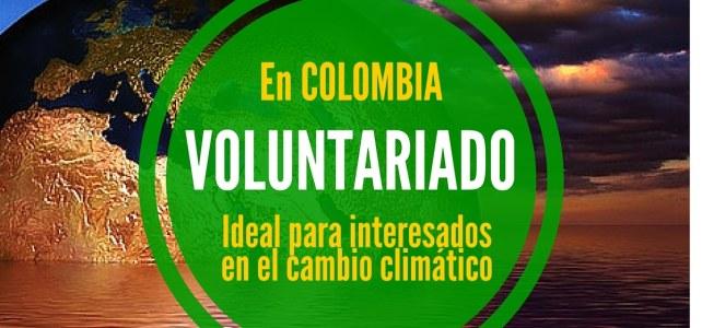 Voluntariado para mitigar el cambio climático