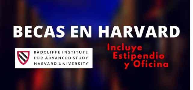 Becas en Harvard – para académicos de todas las áreas y artistas