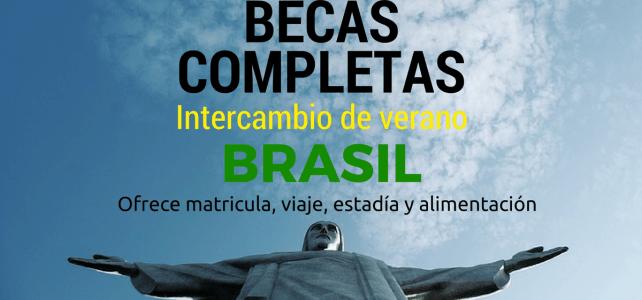 Becas completas en Ciencias Humanas en Brasil