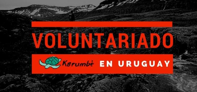 Voluntariado en Uruguay – Viaja y aporta con tu trabajo.