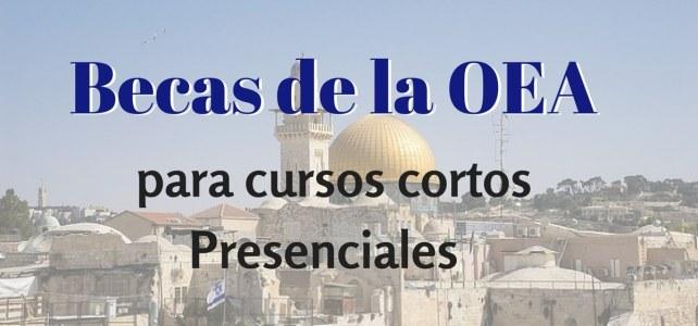 Becas de la OEA  para cursos cortos