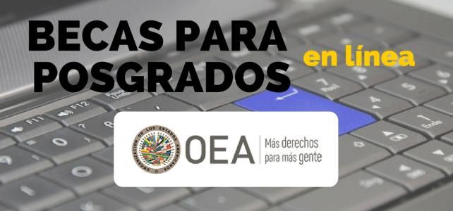 Becas de posgrados en línea con la OEA