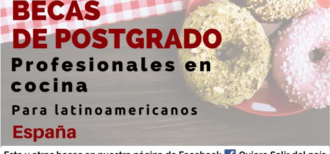 Becas en España para profesionales en cocina