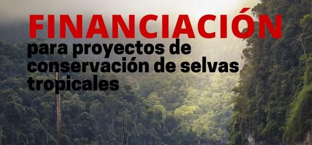 Subvenciones para proyectos de conservación de selvas tropicales