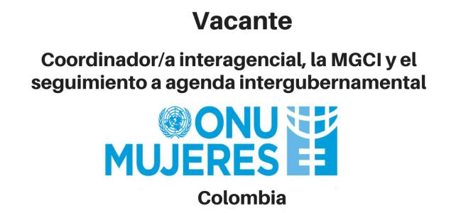 Vacante coordinador/a  interagencial con ONU mujeres