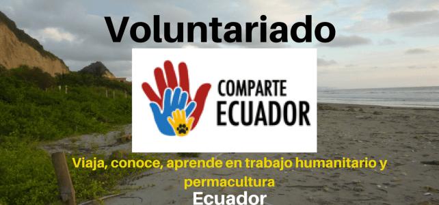 Voluntariado en las playas de Ecuador  para viajeros y viajeras