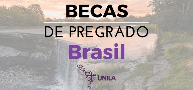 Becas de pregrado en Brasil – Mas de 20 profesiones, incluye Medicina