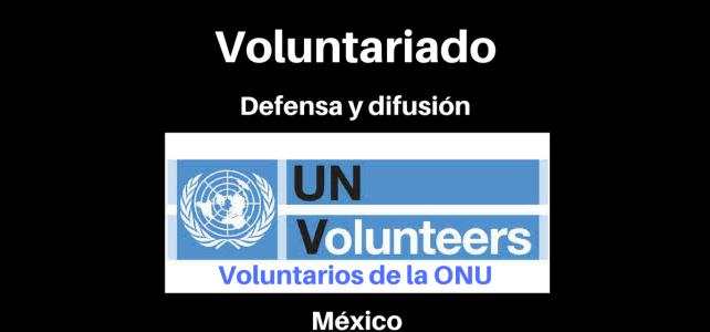 Voluntariado remunerado con Naciones Unidas en México.