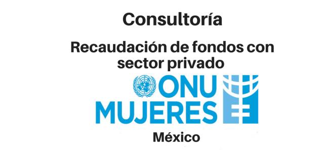 Consultoría piloto de Recaudación de Fondos con Sector Privado – ONU Mujeres