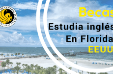 Becas para estudiar inglés en la Florida – USA
