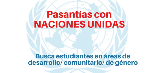 Pasantías con NACIONES UNIDAS en áreas de desarrollo comunitario y género