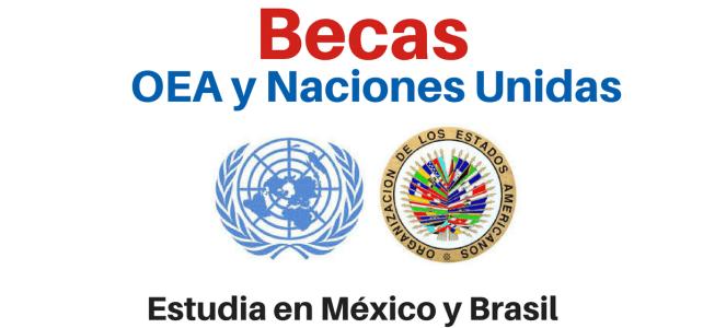 Becas para estudiar en Brasil y México  – ideal para posgrados en areas de la salud