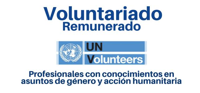 Convocatoria abierta ONU : Voluntariado remunerado en asuntos de género y acción humanitaria