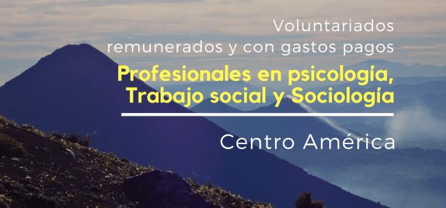 Voluntariado remunerado para profesionales en psicología, sociología y trabajo social.