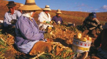Los socialistas de las Medianías de Gran Canaria homenajean a la mujer rural