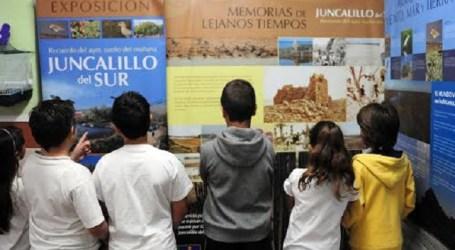 Juncalillo del Sur, inspiración para la sostenibilidad del CEIP Oasis de Maspalomas