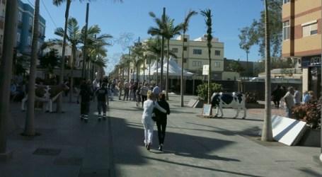 Vecindario alberga hasta Reyes la Feria de Artesanía