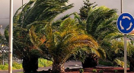 El mal tiempo obliga al Cabildo de Gran Canaria a activar el Plan de Emergencias
