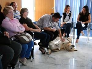 "Programa ""Nahai"", de intervención psicológica con animales"