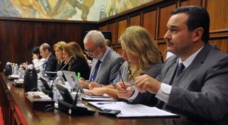 BIC Oasis: El pleno del Cabildo rechaza la Comisión de Investigación