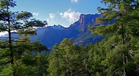El Gobierno 'ordena' la práctica deportiva en el Parque Natural de Pilancones