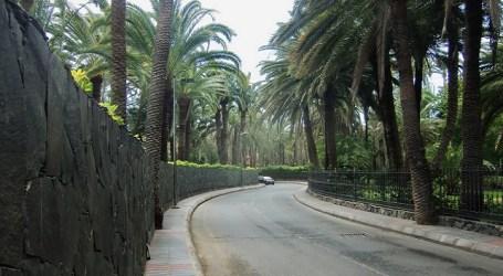 El Gobierno de Canarias desestima el BIC del Oasis de Maspalomas