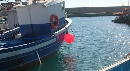 NC exige a Madrid la revisión del cupo de capturas de atún rojo asignado a Canarias