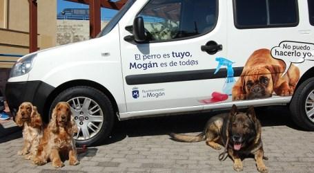 Mogán pretende acabar con las 'cacas' de los perros en la vía pública