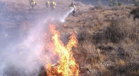 Los fuegos en la isla son intencionados y las investigaciones darán sus frutos