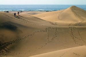 Turistas y locales caminan por las Dunas de Maspalomas para llegar a la playa