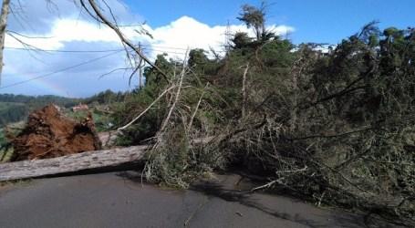 El Cabildo pide no circular por las carreteras de Gran Canaria debido al peligro por el temporal