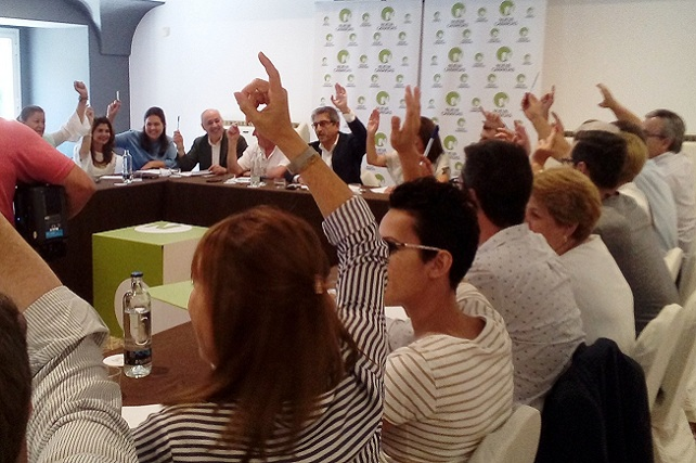 Nueva Canarias, ejecutiva