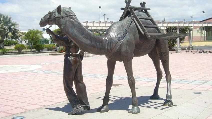 Plaza del Camellero, San Fernando de Maspalomas
