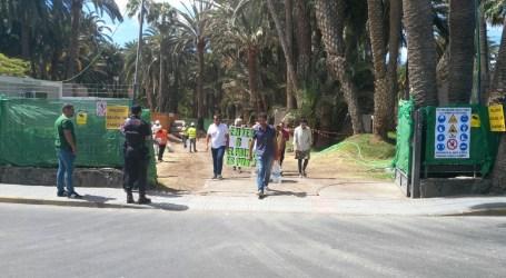 Ecologistas de Turcón se encadenan en el Palmeral de Maspalomas