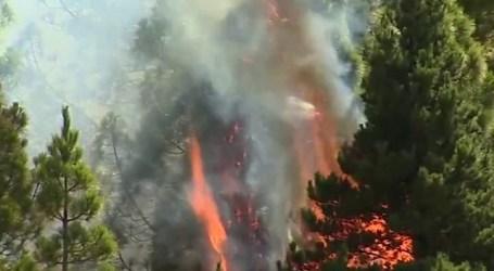 CCOO pide al Ayuntamiento un reconocimiento para los agentes que trabajaron durante los incendios