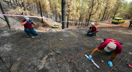 El Cabildo investiga el 100% de los incendios forestales de Gran Canaria con una brigada que está a la cabeza del país