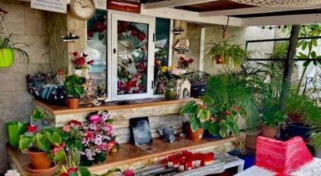 El Ayuntamiento condena el robo de las joyas de la Virgen del Carmen del Muelle de Arguineguín