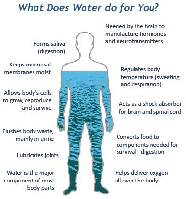 Agua beneficios