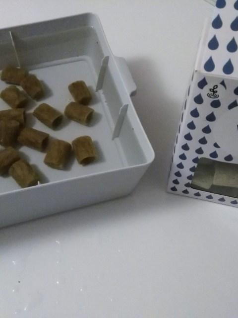 Preparação da incubadora