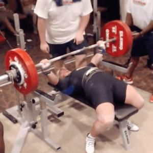 Liane World Record Bench