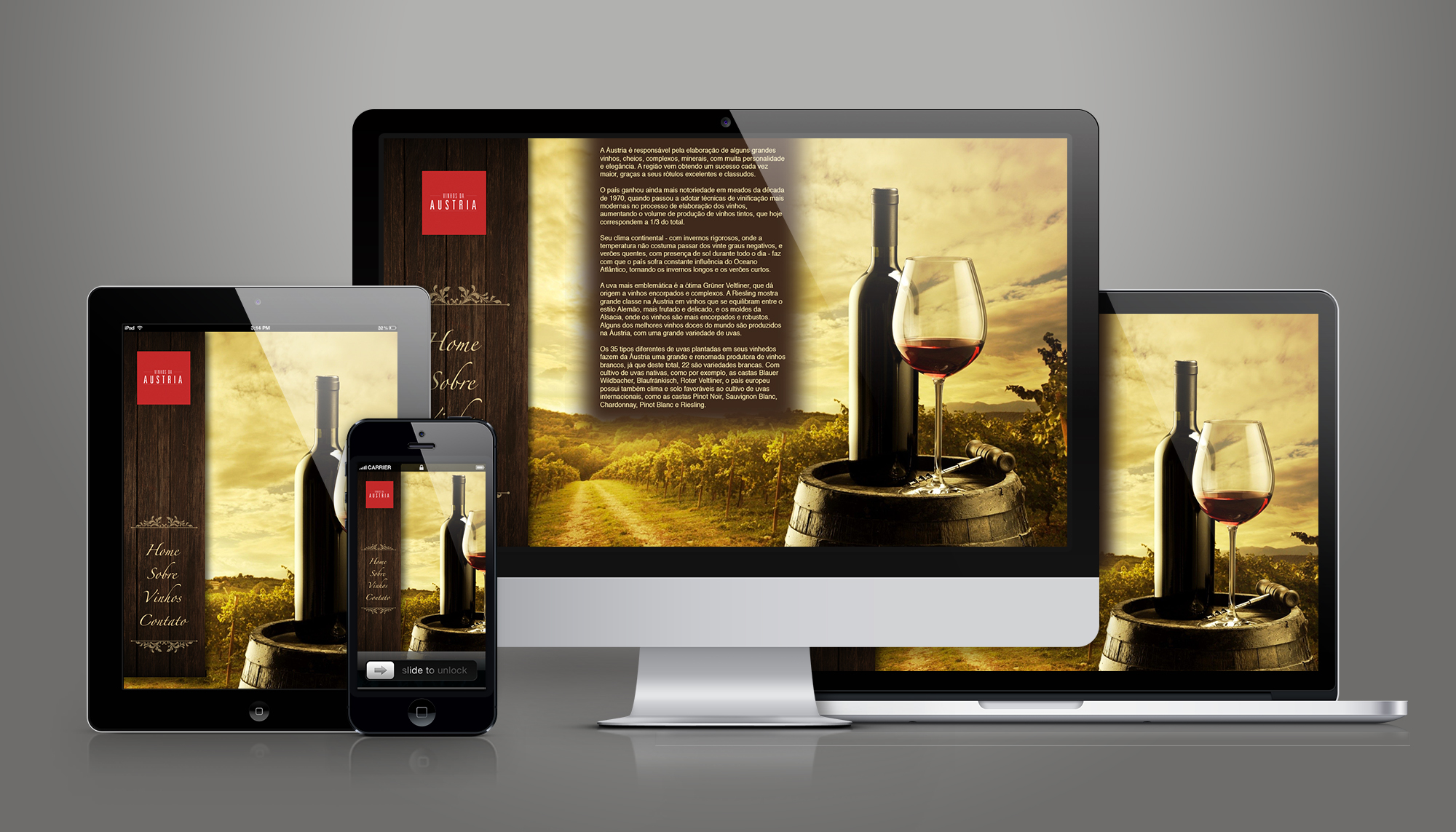 site wordpress vinho