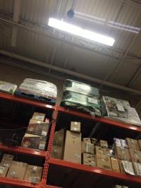 Falconer Wendy Pavlicek Rescues Hawk from Home Depot ...
