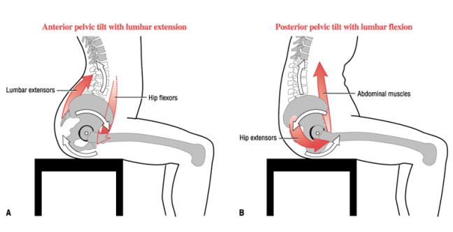 anterior-posterior