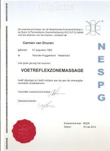 Diploma VRZ 2 001
