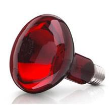 Bóng đèn hồng ngoại Philip 100W