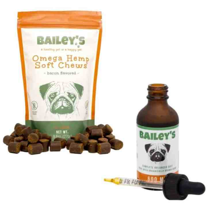 CBD Oil For Pets | Why Use It & Guide To Buying